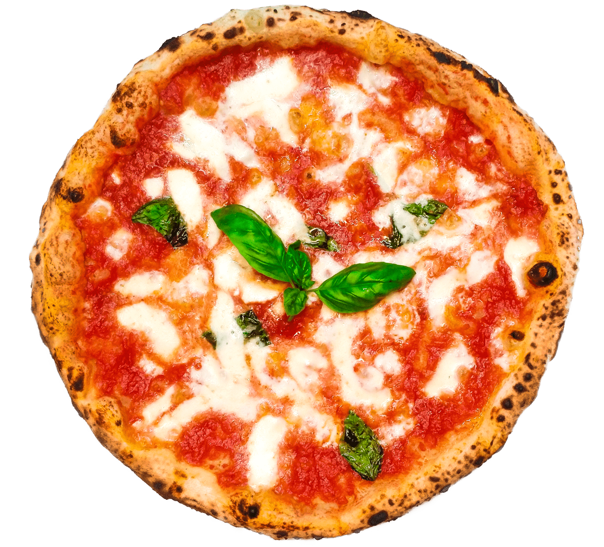 pizza margherita pizzeria prisco palinuro